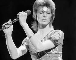 Bowie Ziggy