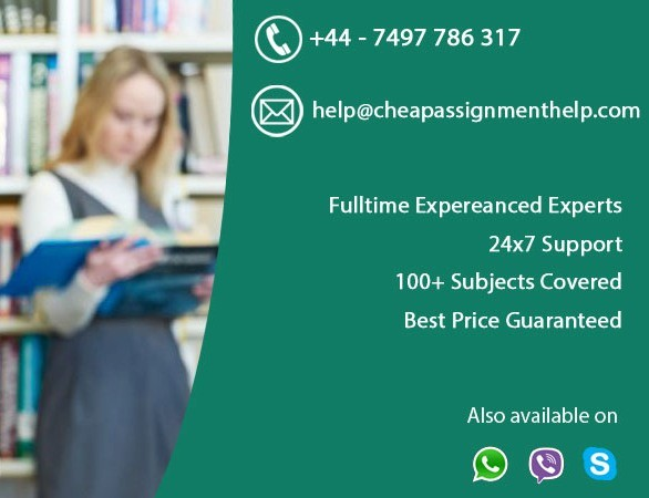 assignment writers college essay writer
